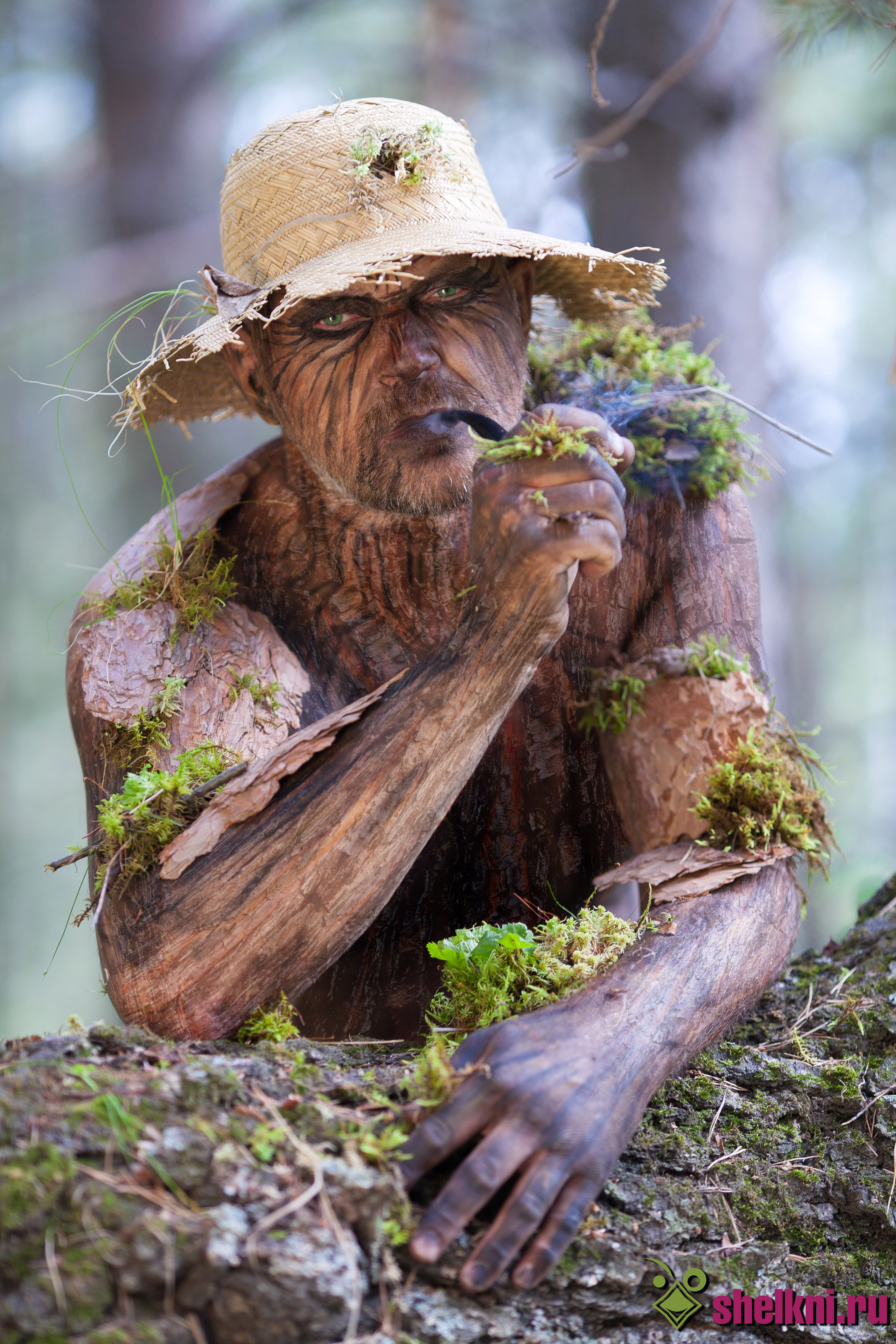 Картинка или изображение лесовичка