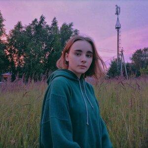 Sestakova picture